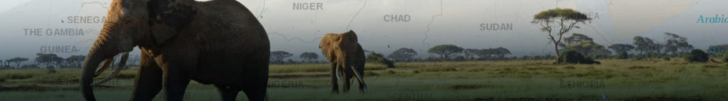 header africa
