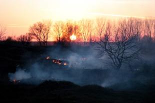WildfireSmoke