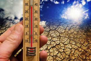 Thermometer and scorched earth